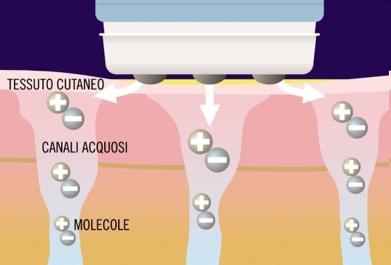 diagram of how scalp electroporation tech works